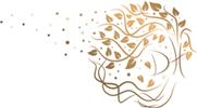 Daniela Hirschauer Logo